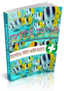 Tropical Fish Care | eBooks | Business and Money
