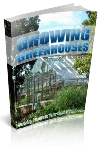 Growing Plants In Your Own Greenhouse | eBooks | Business and Money