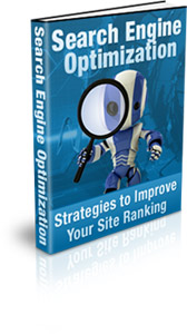 Search Engine Optimization | eBooks | Business and Money