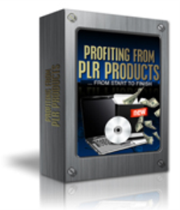 Profiting From PLR | eBooks | Business and Money
