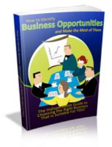 Identifying Business Opportunities | eBooks | Business and Money