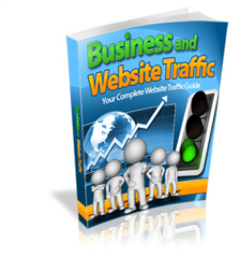 Business and Website Traffic | eBooks | Business and Money