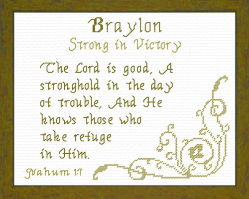 First Additional product image for - Name Blessings - Braylon