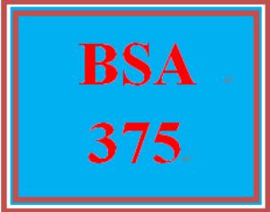 BSA 375 Week 4 Learning Team: Testing and Installation | eBooks | Education