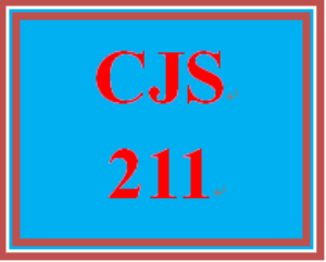 CJS 211 Week 3 Ethics Issue Presentation | eBooks | Education