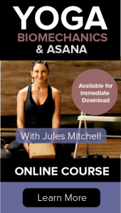 yoga biomechanics and asana