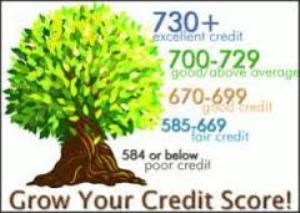 credit sweep do your self