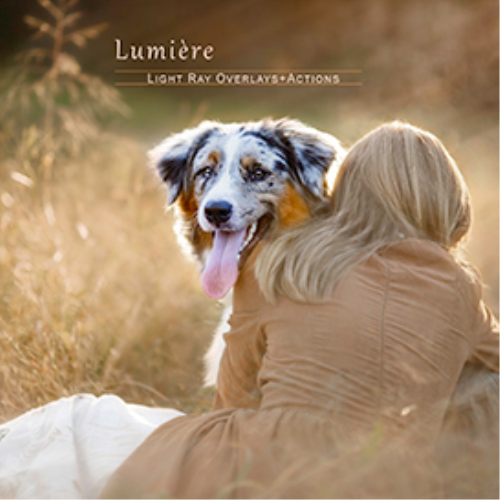 First Additional product image for - Lumière Light Overlays and Actions