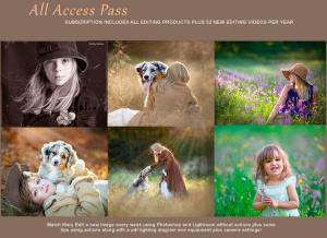 bundled all access pass