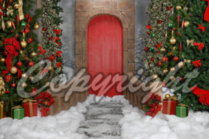 christmas single backdrop