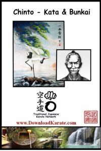 Chinto kata & bunkai | Movies and Videos | Sports