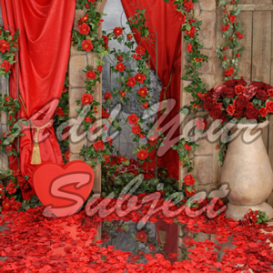valentine single backdrop