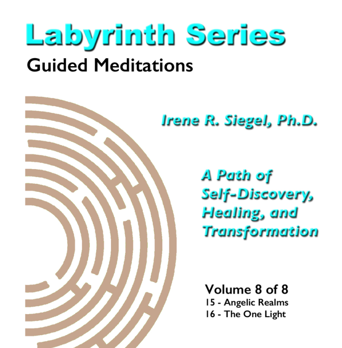First Additional product image for - Labyrinth Series Guided Meditations - Volume 8