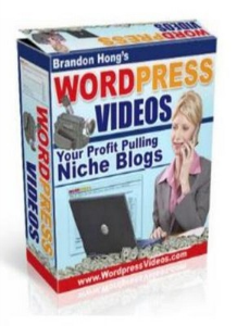 Profit Pulling Niche Blogs with Wordpress | eBooks | Business and Money