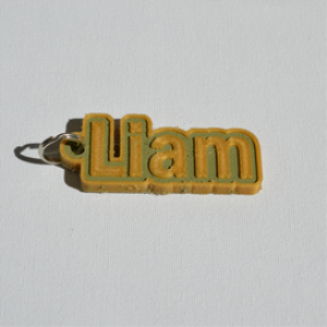 liam single & dual color 3d printable keychain-badge-stamp
