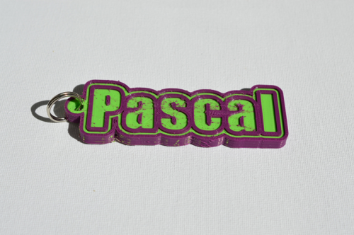 First Additional product image for - Pascal Single & Dual Color 3D Printable Keychain-Badge-Stamp