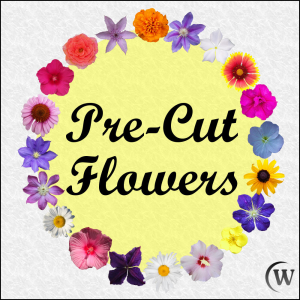 pre-cut flowers custom digital images