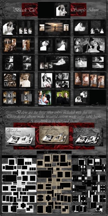 Second Additional product image for - (1F) Wedding Album Collection
