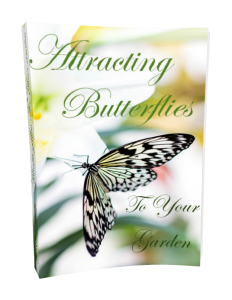 Attracting Butterflies To Your Garden | eBooks | Home and Garden