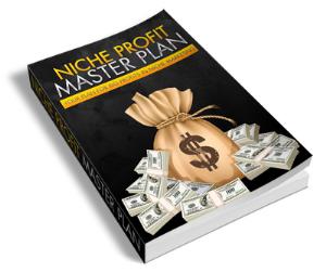 niche profit master plan
