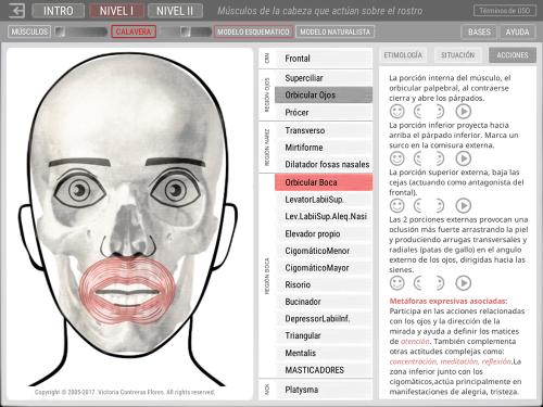 First Additional product image for - ARTNATOMYA (Español - Sistema Macintosh)
