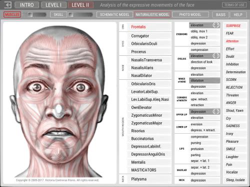 Second Additional product image for - ARTNATOMYA (Español - Sistema Macintosh)
