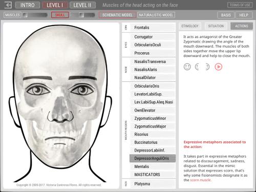 Second Additional product image for - ARTNATOMYA (English - Windows system)