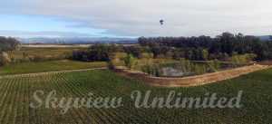 hot air balloon over the vineyards