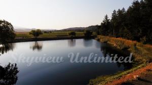 vineyard reservoir - napa valley