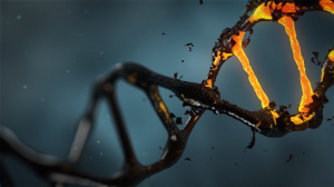 Unlock Junk DNA | Movies and Videos | Religion and Spirituality