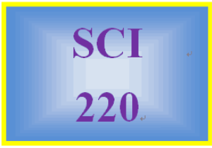 SCI 220 Week 4 The 3 Day Activity Analysis | eBooks | Education