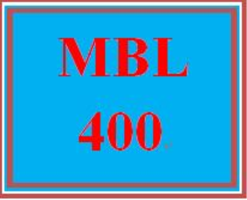 First Additional product image for - MBL 400 Week 1 Individual: Sales Pitch