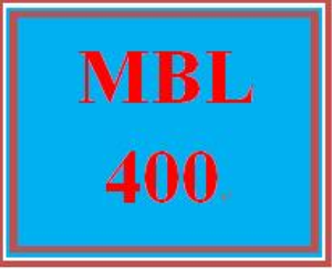 MBL 400 Week 5 Learning Team: Shopping App Development | eBooks | Education