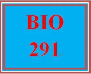 BIO 291 Week 1 WileyPLUS Worksheets   eBooks   Education