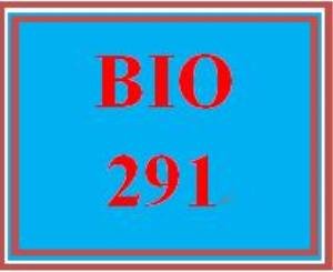 BIO 291 Week 6 WileyPLUS Worksheets | eBooks | Education