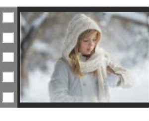 """Snow Sparrow"" Edit 