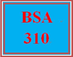 BSA 310 Week 3 Learning Team: Bubble Films Status Report | eBooks | Education