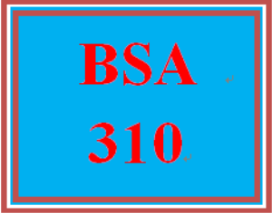 BSA 310 Entire Course | eBooks | Education