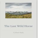 The Last Wild Horse | Audio Books | Fiction and Literature