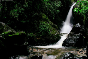 Natural Waterfall | Other Files | Photography and Images