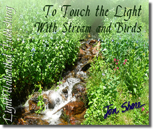 to touch the light with stream and birds side 1