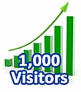 1,000 Visitors In One Month | eBooks | Internet