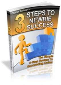 3 Steps To Newbie Success | eBooks | Business and Money