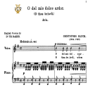 O del mio dolce ardor, Medium Voice in E Minor, C.W.Gluck. For Soprano, Mezzo, Baritone. Tablet Sheet Music. A5 (Landscape). Schirmer (1894) | eBooks | Sheet Music