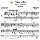 Sebben, crudele, Low Voice in C Minor, A.Caldara. For Contralto, Bass, Countertenor. Tablet Sheet Music. A5 (Landscape). Schirmer (1894) | eBooks | Sheet Music