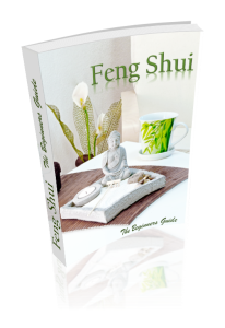 feng shui the beginners guide