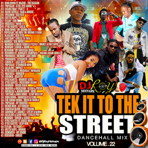 Dj Roy Tek It To The Street Dancehall Mix Vol.22 | Music | Reggae