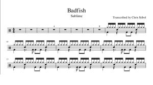 Badfish by Sublime drum transcription | Music | Rock
