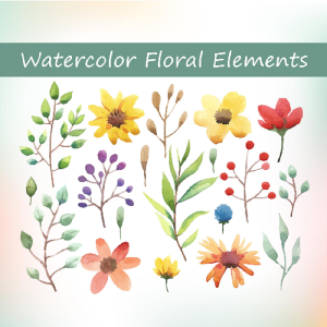 watercolor floral elements set, make your own watercolor wreaths and bouquets, watercolor floral invitations, watercolor clip art designs