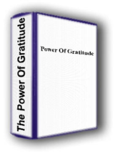 The Astonishing Power of Gratitude by Wes Hopper | eBooks | Self Help